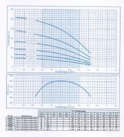 EW23254 Top4  4-190 Tiefbrunnenpumpe230V,  FH max 189m, Qmax 3,6m³, P2 1500Watt